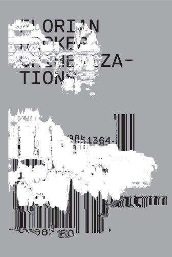 9780985136420: Florian Hecker: Chimerizations