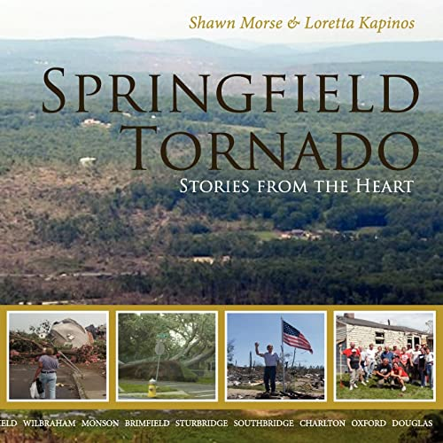 9780985214654: Springfield Tornado: Stories From The Heart