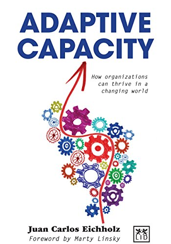 9780985286484: Adaptive Capacity: How Organizations Can Thrive in a Changing World