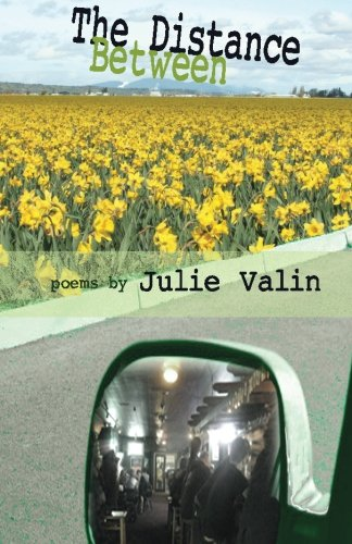 9780985307516: The Distance Between: poems by Julie Valin