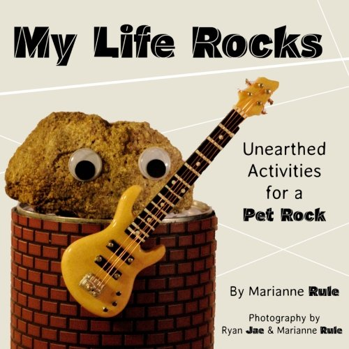9780985332556: My Life Rocks: Unearthed Activities for a Pet Rock