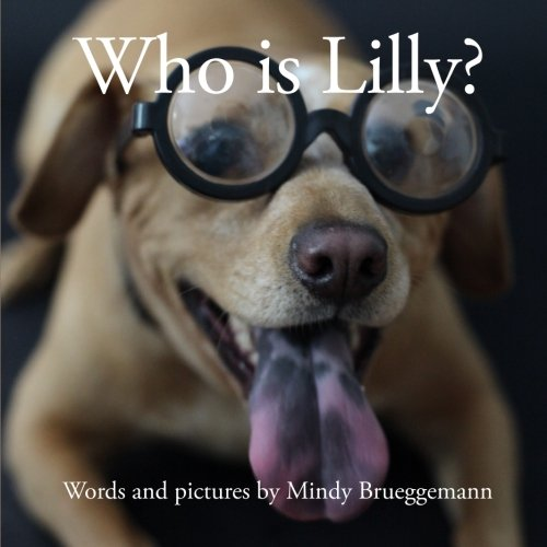 9780985567613: Who is Lilly?
