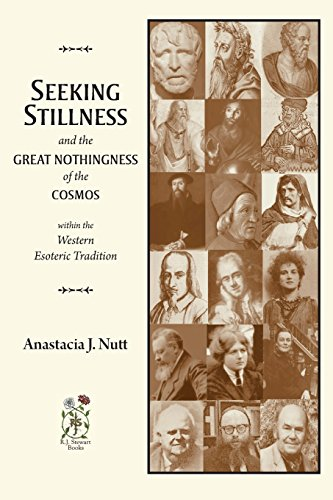 9780985600624: Seeking Stillness and the Great Nothingness of the Cosmos