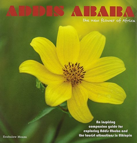 9780985682910: Addis Ababa, the new flower of Africa