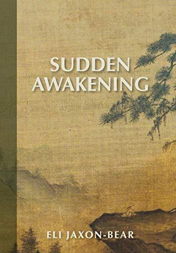 9780985691103: Sudden Awakening
