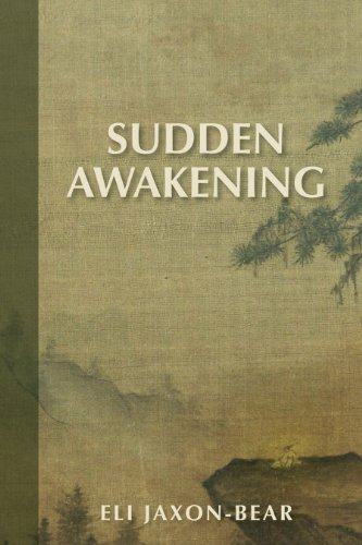 9780985691110: Sudden Awakening