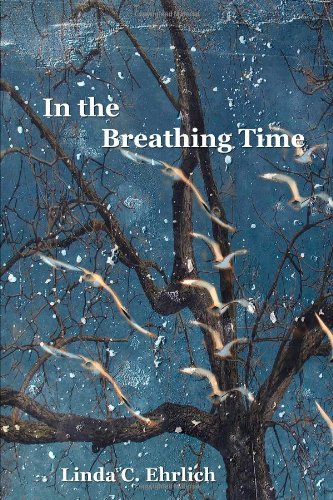 9780985878603: In the Breathing Time