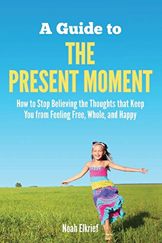 9780985953409: A Guide to The Present Moment