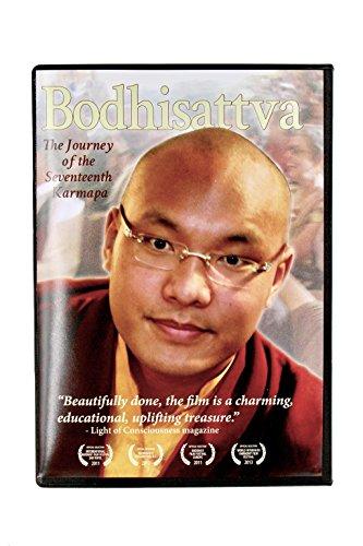 9780985978518: Bodhisattva: The Journey of the Seventeenth Karmapa