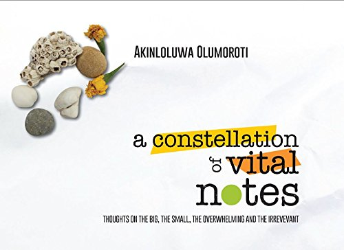 9780986223433: A Constellation of Vital Notes