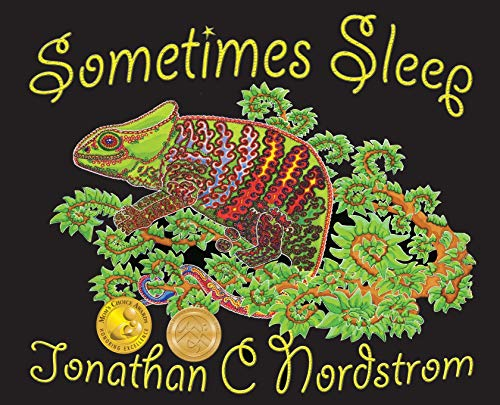 9780986243769: Sometimes Sleep