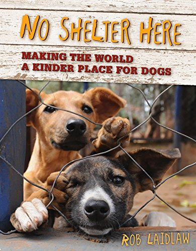 9780986949524: No Shelter Here: Making the World a Kinder Place for Dogs