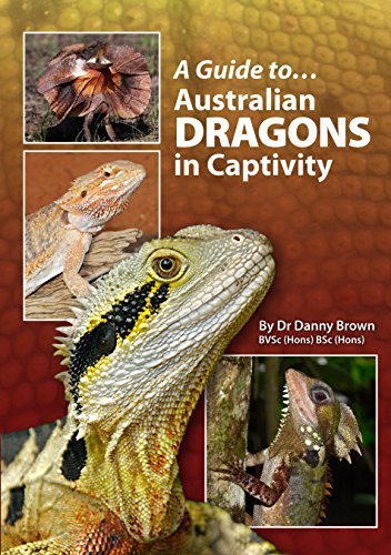9780987244727: Australian Dragons In Captivity (A Guide to)