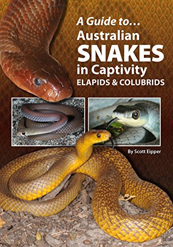 9780987244789: A Guide to Australian Snakes in Captivity: Elapids and Colubrids