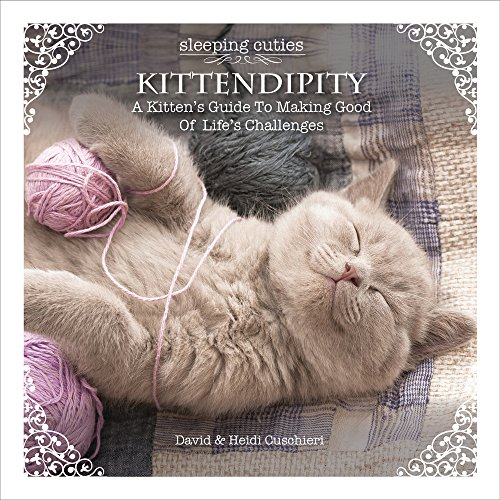 Kittendipity: A Kitten's Guide to Making Good of Life's Challenges (Sleeping Cuties): David...