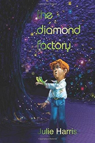 9780987345646: The Diamond Factory