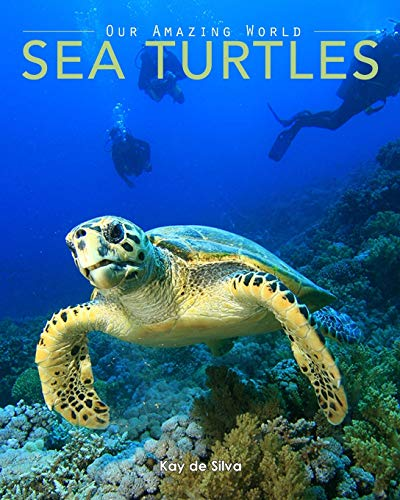 9780987597069: Sea Turtles: Amazing Pictures & Fun Facts on Animals in Nature