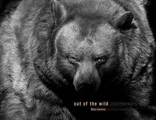 Out of the Wild: Zoo Portraits: Ivanovic, Boza