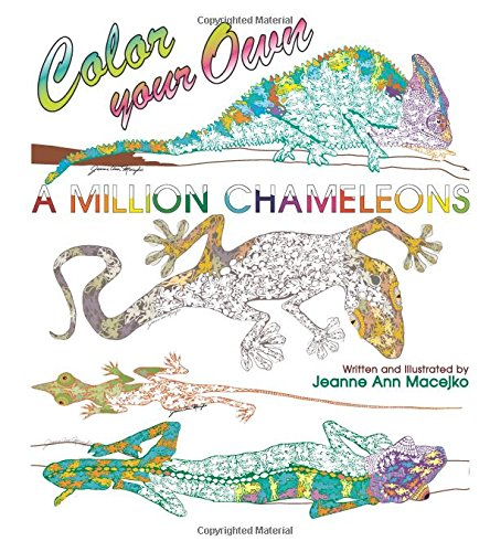 9780988464568: A Million Chameleons: Color Your Own