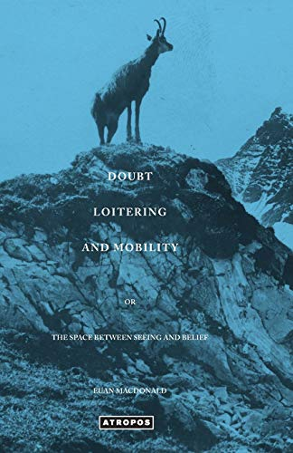 9780988517080: Doubt Loitering and Mobility