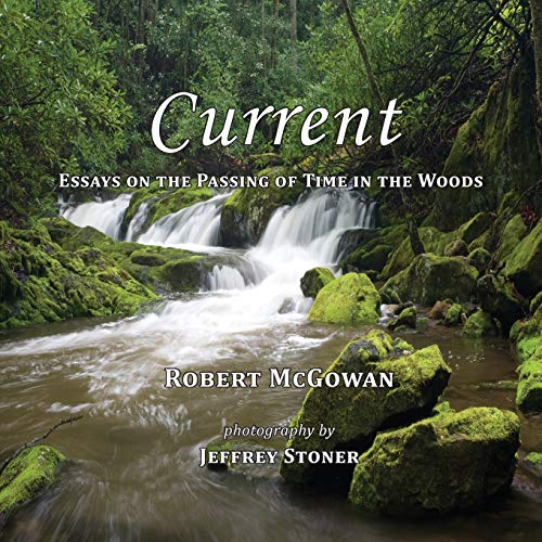 9780988589728: Current: Essays on the Passing of Time in the Woods