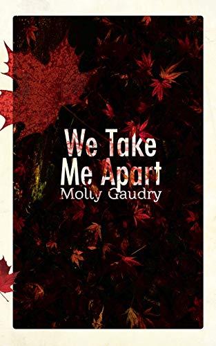 9780988732889: We Take Me Apart