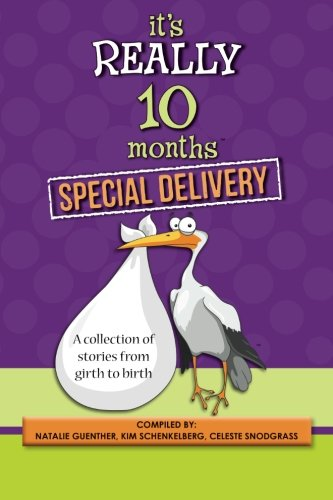 9780988866843: It's Really 10 Months Special Delivery: A Collection of Stories from Girth to Birth
