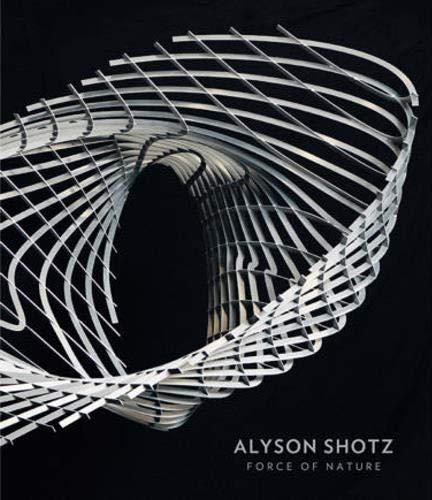 9780989239448: Alyson Shotz : Force of Nature