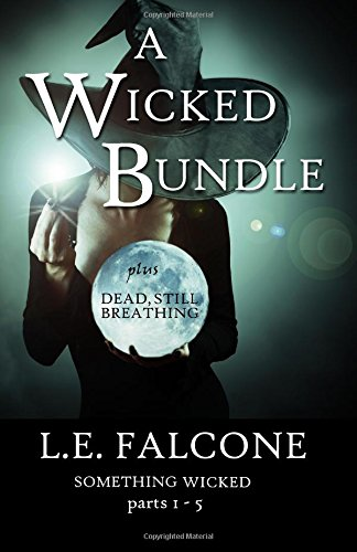 9780989281355: A Wicked Bundle: the complete Something Wicked