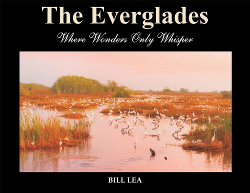 9780989287098: The Everglades: Where Wonders Only Whisper