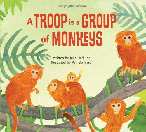 9780989668804: A Troop is a Group of Monkeys