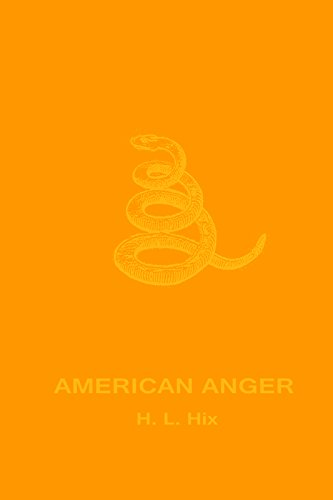 9780989753241: American Anger: An Evidentiary