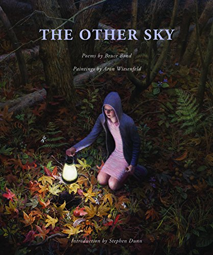 9780989753265: The Other Sky