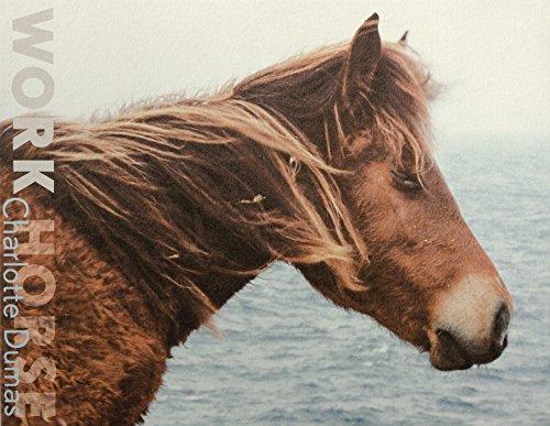 9780989785969: Charlotte Dumas: Work Horse