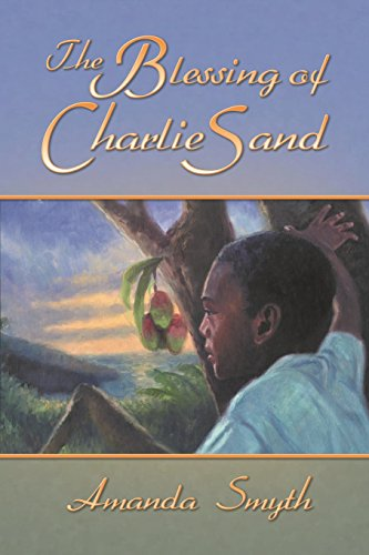9780989930529: The Blessing of Charlie Sand