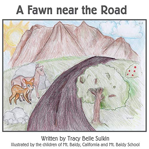 A Fawn Near the Road (Paperback): Tracy Belle Sulkin