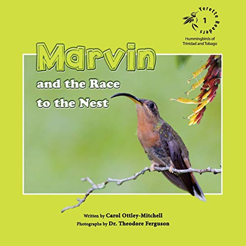 Marvin and the Race to the Nest: Ottley-Mitchell, Carol