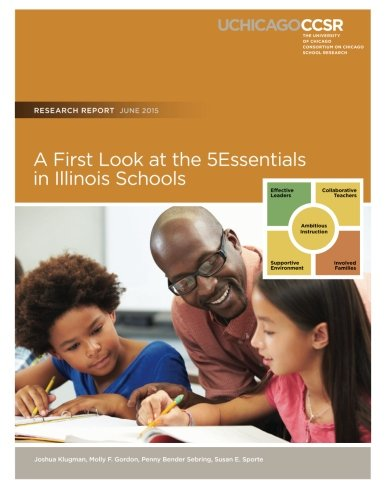 9780990956334: A First Look at the 5Essentials in Illinois Schools