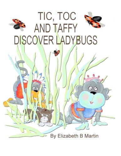 9780991054367: Tic And Toc And Taffy Discover Ladybugs