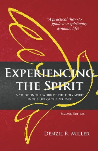 9780991133246: Experiencing the Spirit: A Stidy on the Work of the Holy Spirit in the Life of the Believer