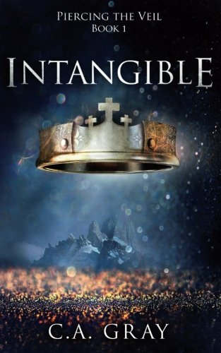 9780991185801: Intangible (Piercing the Veil) (Volume 1)