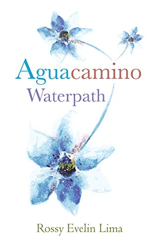 9780991208791: Aguacamino/Waterpath (English and Spanish Edition)