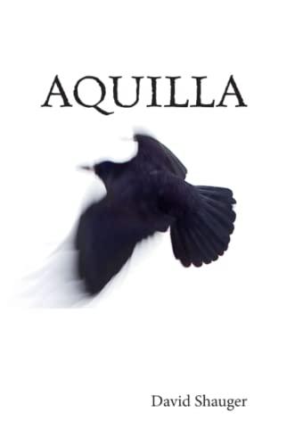 9780991228362: Aquilla