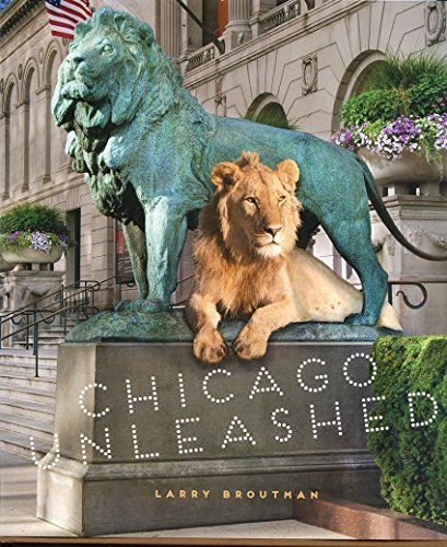 Chicago Unleashed: larry broutman