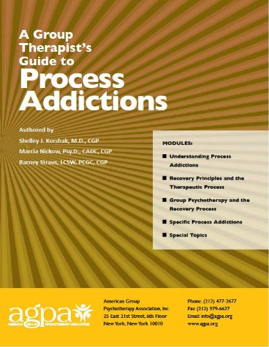 9780991494606: A Group Therapist's Guide to Process Addictions