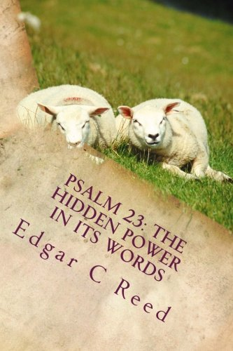 9780991534326: Psalm 23: The hidden power in its words