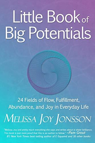 9780991534685: Little Book of Big Potentials