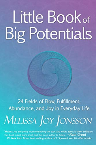 9780991534685: Little Book of Big Potentials: 24 Fields of Flow, Fulfillment, Abundance, and Joy in Everyday Life