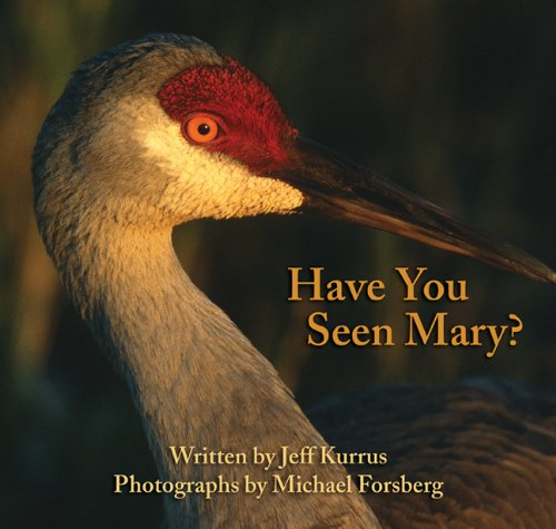 9780991638901: Have You Seen Mary?