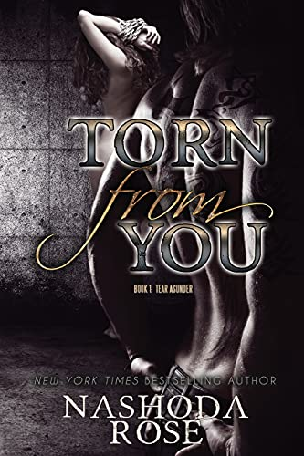 9780991732746: Torn from You: Volume 1